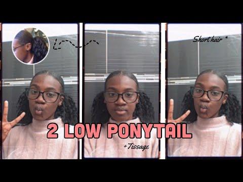 2 LOWS PONYTAILS + TISSAGE (4B,4C) petit cheveux