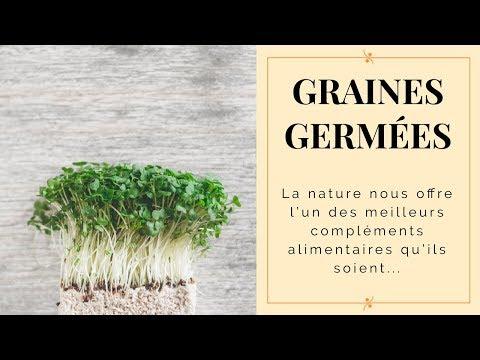 COMPLEMENT ALIMENTAIRE NATUREL : LES GRAINES GERMÉES!