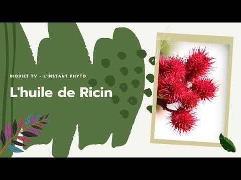 🌸 L'huile de Ricin, vos cheveux l'adorent ✅. dans l'Instant Phyto [ BioDiet TV ]. 🎬