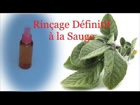 CHEVEUX CRÉPUS: Rinçage  aux feuilles de sauge pour la pousse des cheveux