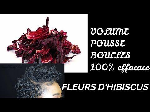 POUSSE ET VOLUME INCROYABLES AVEC CETTE ROUTINE AUX FLEURS D'HIBISCUS/ CHEVEUX CRÉPUS