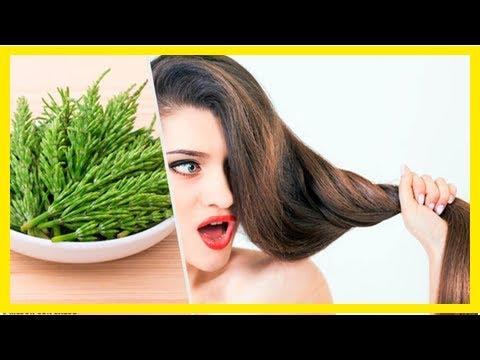 Comment utiliser la prêle des champs pour faire pousser vos cheveux