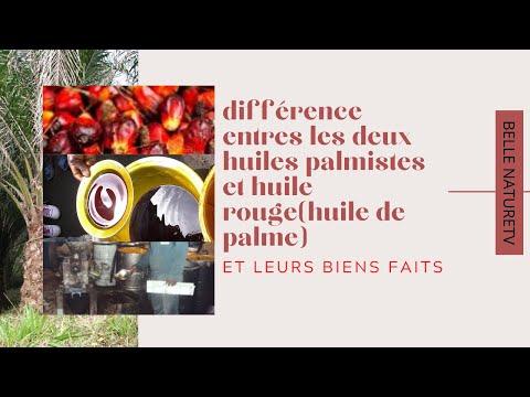 DIFFERENCES ENTRES LES DEUX HUILES PALMISTES ET HUILE ROUGE(HUILE DE PALME) EN 2020