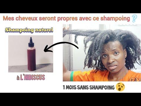 🇨🇮 Shampoing Naturel HIBISCUS + SHIKAKAI 🧡 STIMULE LE CUIR CHEVELU →POUSSE – Valèh Té