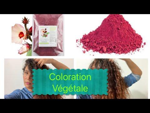 Coloration végétale ☘️: poudre Hibiscus 🌺 +Application et avis