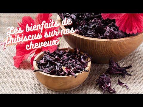 LES BIENFAITS DE L'HIBISCUS SUR LES CHEVEUX