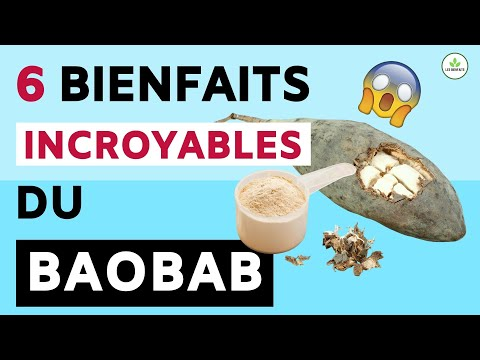 CONNAISSEZ-VOUS LES BIENFAITS INCROYABLES DU BAOBAB ?