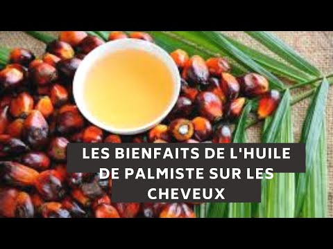 #cafematinal #naturalg                             J'AI TESTE L'HUILE DE PALMISTE SUR MES CHEVEUX…